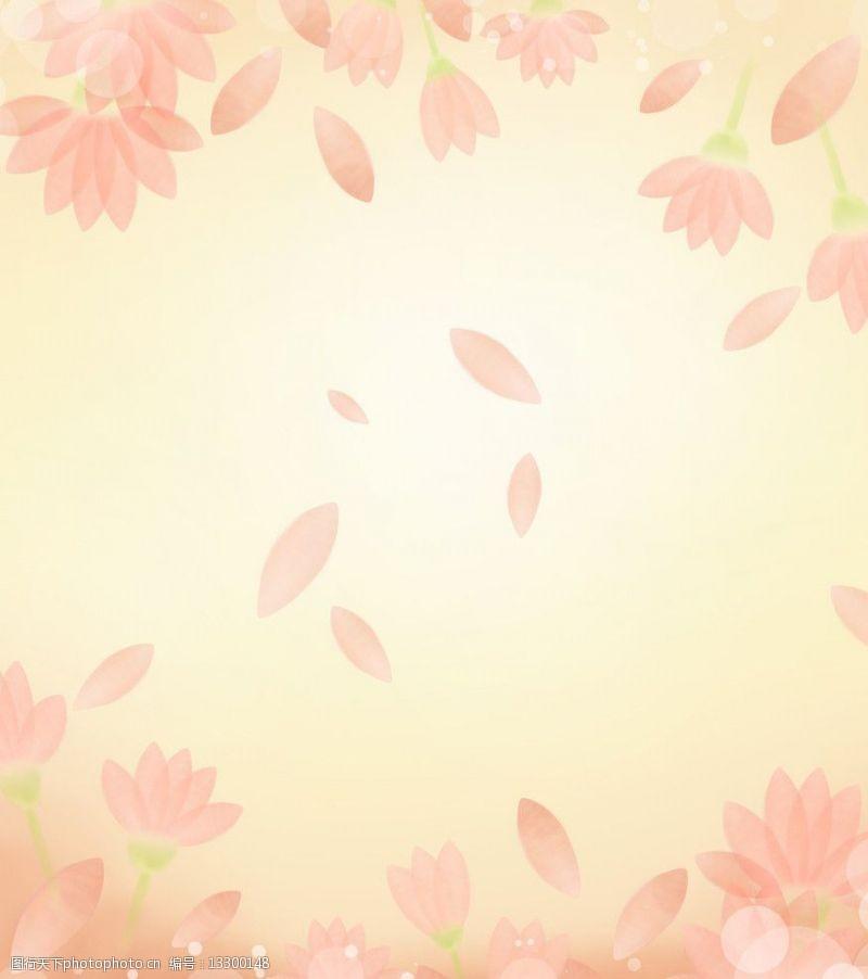 落樱缤纷图片