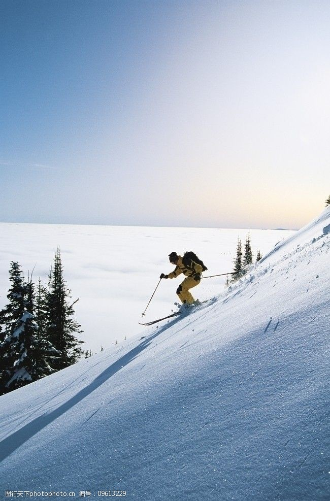 滑雪板冬季运动滑雪图片